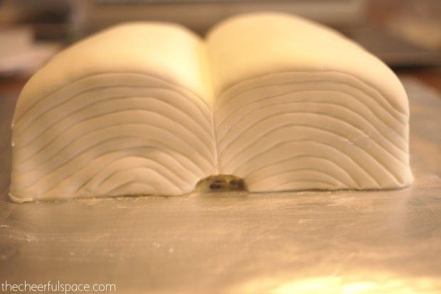 book-cake-27