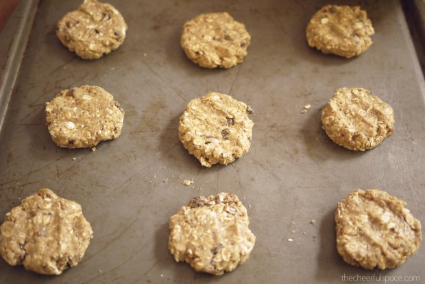 oatmeal-raisin-lactation-cookies-21