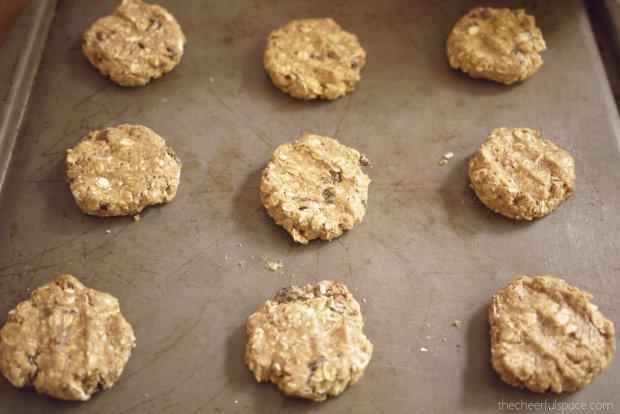 oatmeal-raisin-lactation-cookies-21