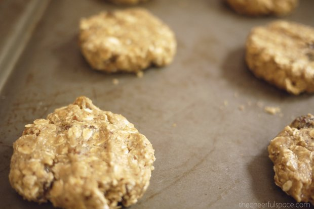 oatmeal-raisin-lactation-cookies-22
