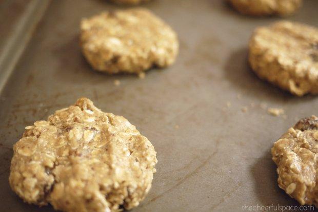 oatmeal-raisin-lactation-cookies-22