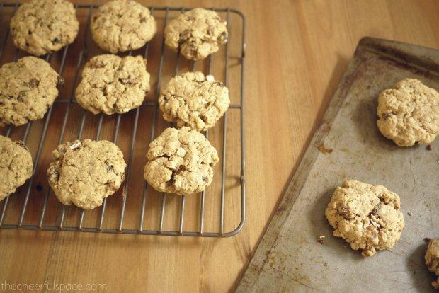 oatmeal-raisin-lactation-cookies-23