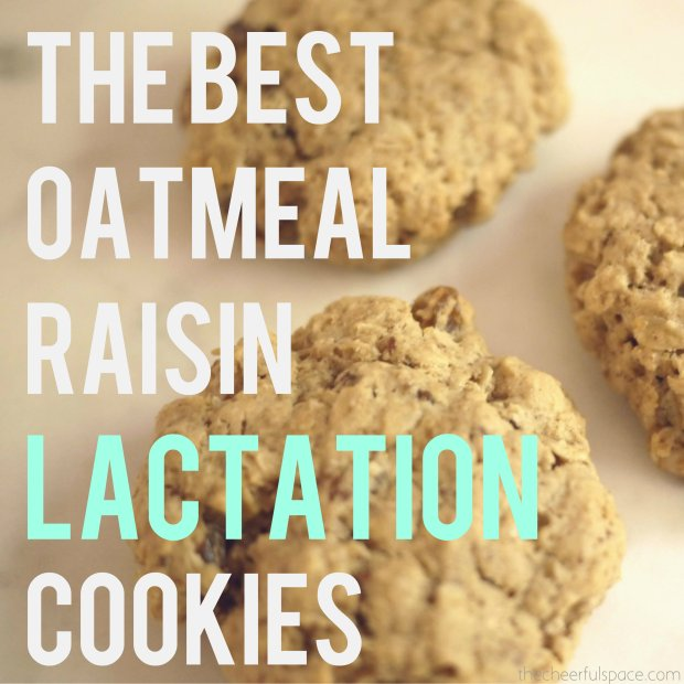 oatmeal-raisin-lactation-cookies-24-pin