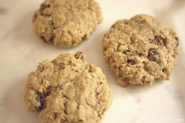 oatmeal-raisin-lactation-cookies-24