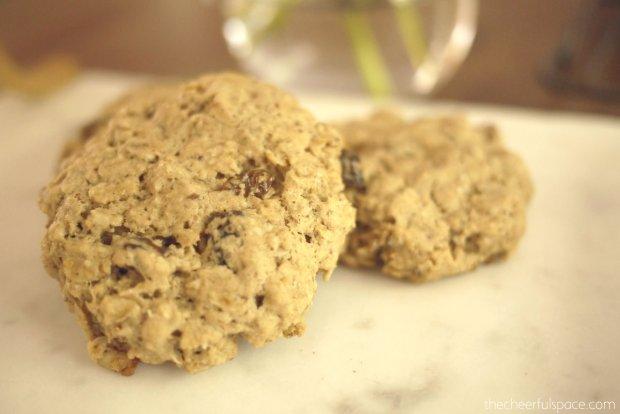 oatmeal-raisin-lactation-cookies-28