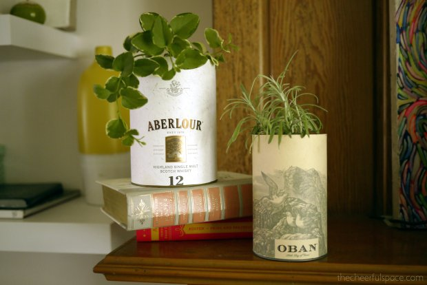 scotch-canister-planters-12