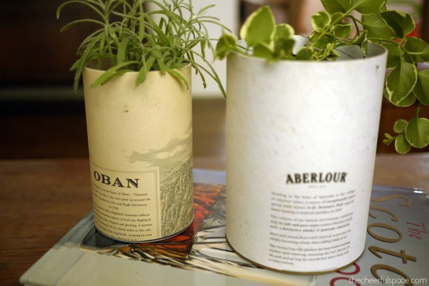 scotch-canister-planters-14