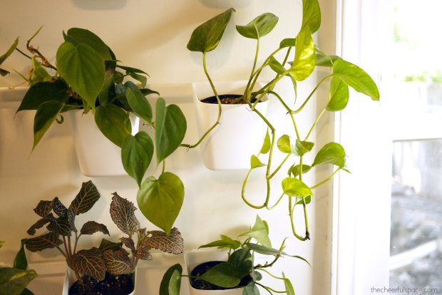 living-plant-wall-03