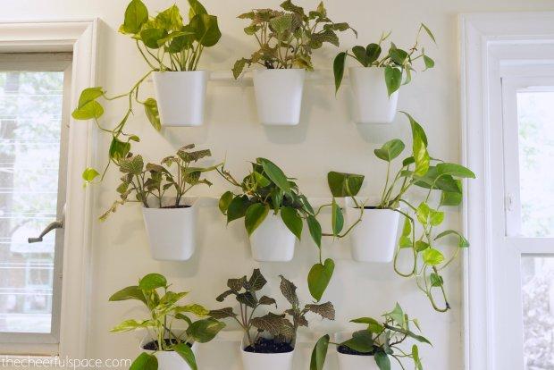living-plant-wall-1-03
