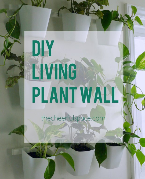 living-plant-wall-2-pin